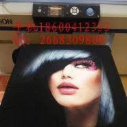 爱普生F2080平板直喷印花机图片