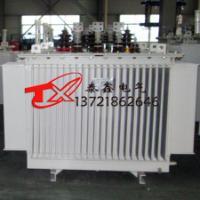 S11节能低损耗油浸式变压器厂