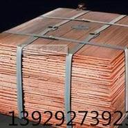 供应铜板回收 东莞铜板回收