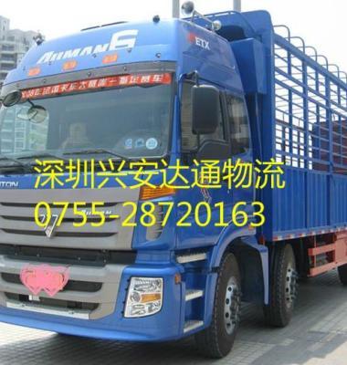 货运包车图片/货运包车样板图 (3)