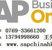 珠海SAP软件维护实施开发培训图片