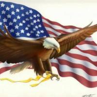 抢占2015美国移民新配额
