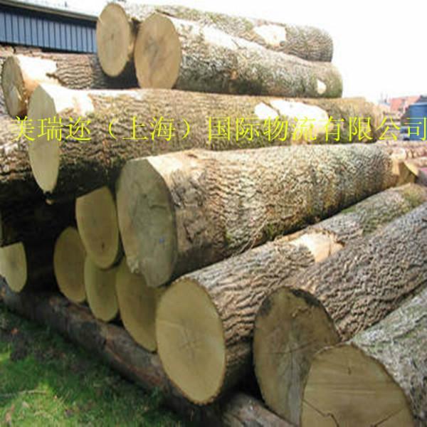供应木材进口代理公司图片