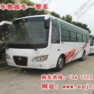 9米客车教练车图片