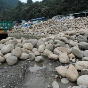 上海金山鹅卵石多少钱图片
