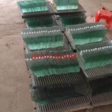惠州供應深圳玻璃加工生產,制造價格商 玻璃加工廠家 玻璃加工生產商圖片