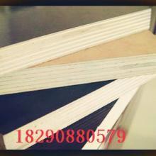新疆模板卡专供,新疆模板卡供应商,新疆模板卡厂商 专供图片