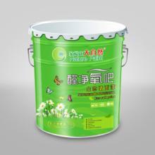 供应大自然油漆多功能环保抗碱底漆,面漆,家装漆,乳胶漆,涂料批发