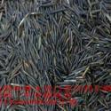 北京批发野米图片