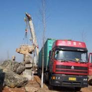 上海川沙千层石哪里最便宜图片