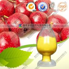 供应纯天然咖啡豆提取物厂家专业生产批发