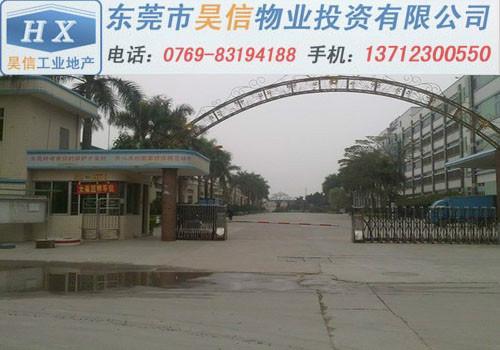 东莞企石厂房出售销售