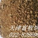 天津菜粕批发单价多少图片