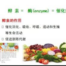 供应天然酵素液,深圳天然酵素液