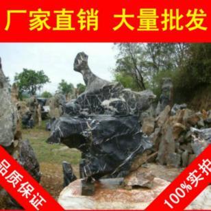扬州太湖石图片