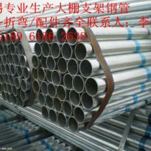 供应镀锌钢管镀锌大棚管,镀锌方管,镀锌椭圆管批发