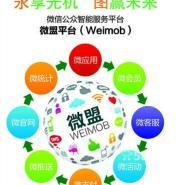 深圳微信互动推广图片