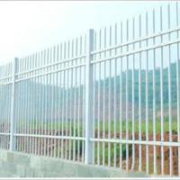 厂家供应锌钢护栏,工艺护栏,蓝飞护栏网,铁艺护栏厂家