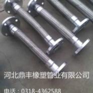 重庆大口径金属软管图片