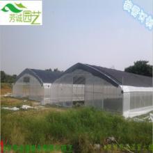 供应农业蔬菜大棚【农业】广州农业蔬菜温室大棚