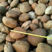 呼和浩特5到8厘米变压器河卵石图片
