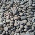 灵寿3-5cm天然鹅卵石厂家价格图片