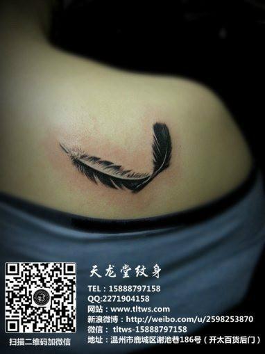 供应羽毛纹身图片