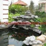 供应假山鱼池制作,南京假山鱼池制作设计,假山鱼池制作设计价格
