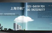 上海哪家印刷厂印刷产品说明书价格便宜质量好,黑白说明书印刷,医疗器械说明书印刷批发