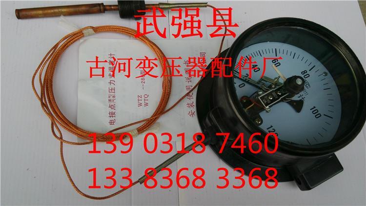供应温度计表WTZ-288