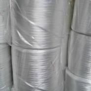 济宁玻璃纤维石膏纱,石膏板用纱图片