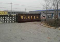 中天猎犬养殖基地简介