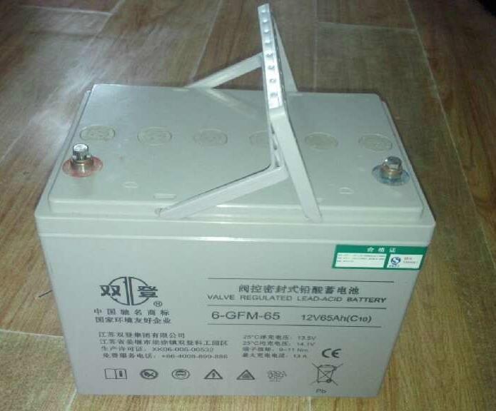 供应长沙双登蓄电池.6-GFM-200双登电力发电蓄电池12V电池价格
