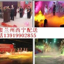 供应锅庄舞蹈赛区婚礼进行曲