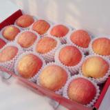 供应陕西红富士苹果价格,红富士苹果包装首选陕西顺利瓜果商行