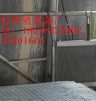 鸡舍调温锅炉图片/鸡舍调温锅炉样板图 (3)