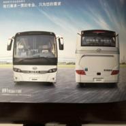 海格客车KLQ6995K图片
