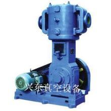 供应WL-100往复式真空泵 无油立式往复真空泵,品质齐全 价格低批发