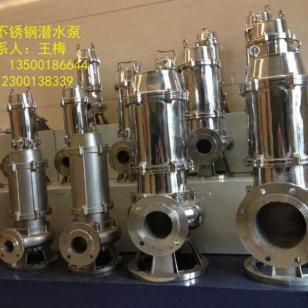 316材质热水潜水泵图片