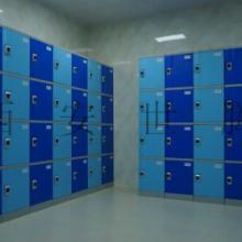 供应渭南浴室更衣柜渭南公共浴室全塑更衣柜健身房塑料更衣柜储物柜批发