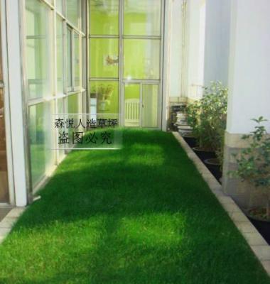 人造草坪图片/人造草坪样板图 (1)
