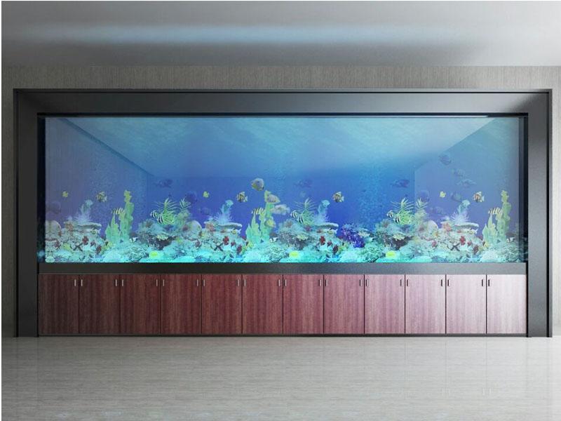 江苏玻璃鱼缸——哪里可以买到高性鱼缸剂