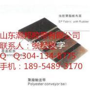 湖南PVC长沙整体带芯阻燃输送带图片