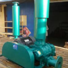 供应罗茨鼓风机增氧泵型号