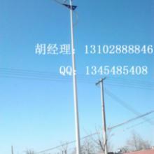供应秦皇岛LED路灯厂家生产LED路灯批发