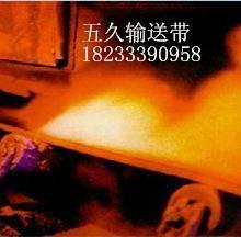 供应尼龙输送带/价格合理/自主生产厂家/200宽-5900宽