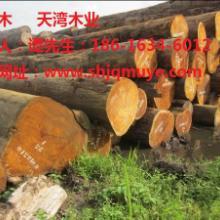 供应徐州巴蒂木防腐木厂家,杭州巴蒂木生产厂家,上海巴蒂木最新价格图片