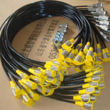 供应龙威进口测压软管微型软管内径2mm批发