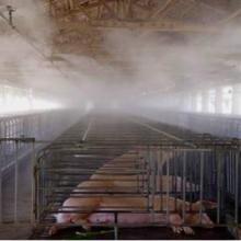 供应金诚喷雾养猪场高压雾化除臭设备  金诚喷雾养猪场消毒杀菌设备批发