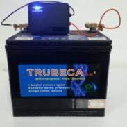 铅酸蓄电池修复器产家图片